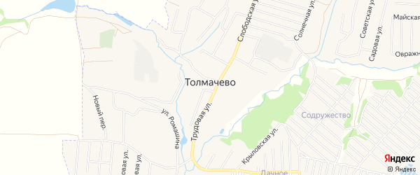 Карта села Толмачево в Брянской области с улицами и номерами домов
