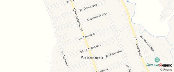 Улица Толстого на карте деревни Антоновки с номерами домов