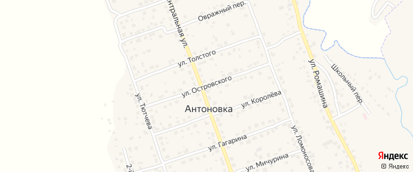 Улица Островского на карте деревни Антоновки с номерами домов