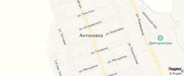 Переулок 1-й Тютчева на карте деревни Антоновки с номерами домов