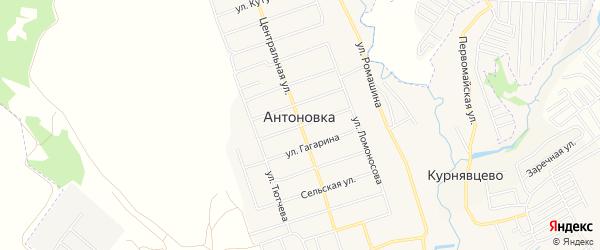 Карта поселка Антоновки в Брянской области с улицами и номерами домов