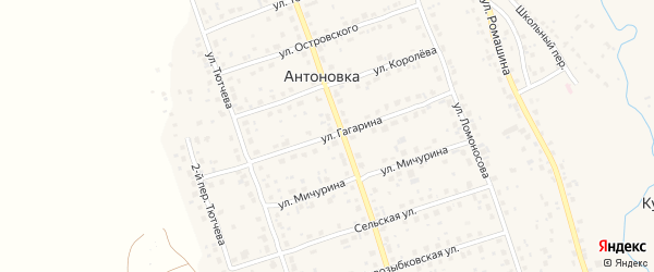 Улица Гагарина на карте деревни Антоновки с номерами домов