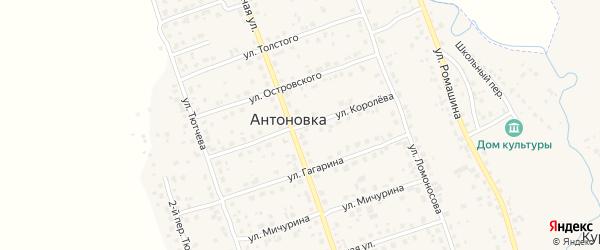 Улица Королева на карте деревни Антоновки с номерами домов