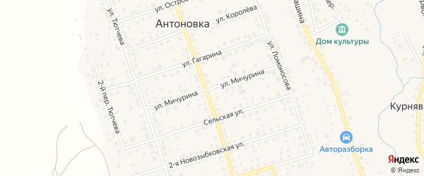 Улица Мичурина на карте деревни Антоновки с номерами домов