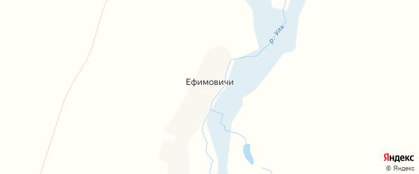 Карта деревни Ефимовичи в Брянской области с улицами и номерами домов