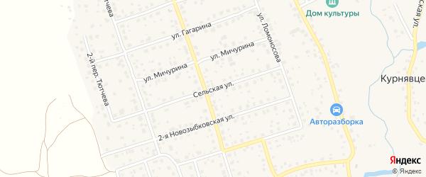 Сельская улица на карте деревни Антоновки с номерами домов