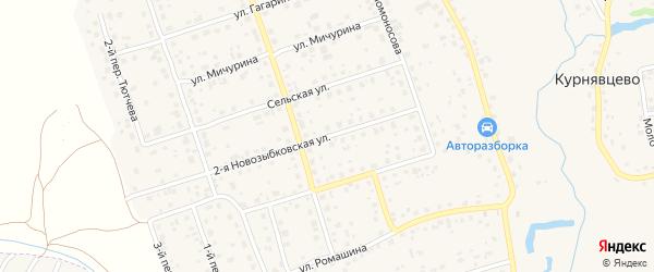 2-я Новозыбковская улица на карте деревни Антоновки с номерами домов