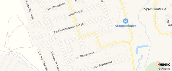 1-я Новозыбковская улица на карте деревни Антоновки с номерами домов