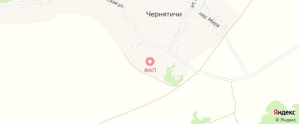 Молодежная улица на карте деревни Чернятичи с номерами домов