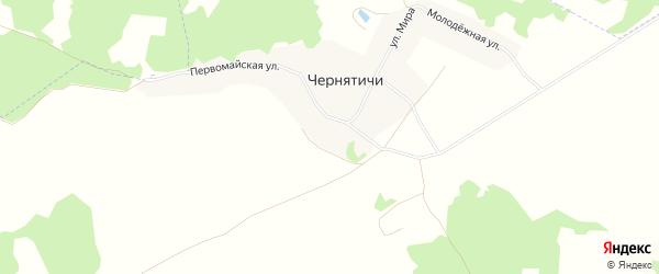 Карта деревни Чернятичи в Брянской области с улицами и номерами домов