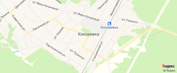 Карта поселка Кокоревки в Брянской области с улицами и номерами домов