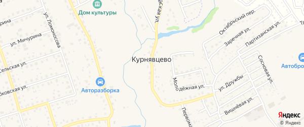 1-й Сосновый переулок на карте деревни Курнявцево с номерами домов