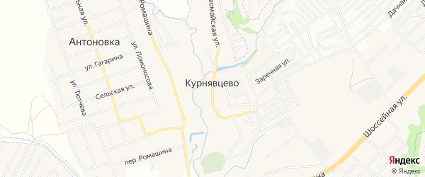 Карта деревни Курнявцево в Брянской области с улицами и номерами домов