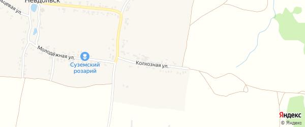 Колхозная улица на карте села Невдольска с номерами домов