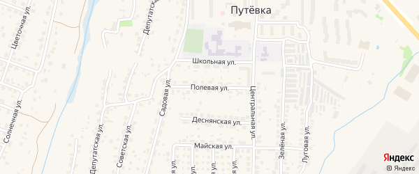 Полевая улица на карте села Толмачево с номерами домов