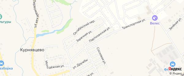 Территория сдт Богатырь на карте деревни Курнявцево с номерами домов