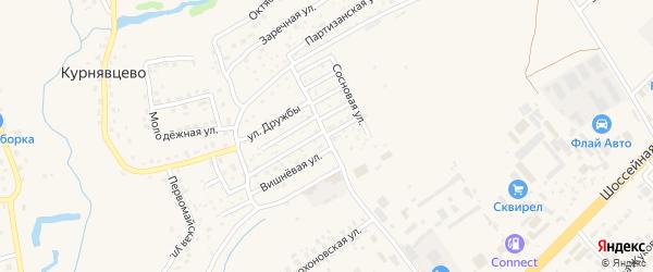 Улица Имени генерала-майора Брынзова В.П. на карте деревни Курнявцево с номерами домов