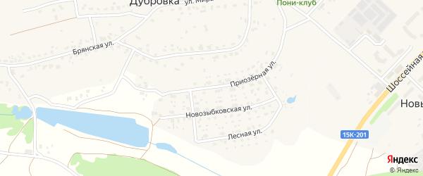 Приозерная улица на карте деревни Дубровки с номерами домов
