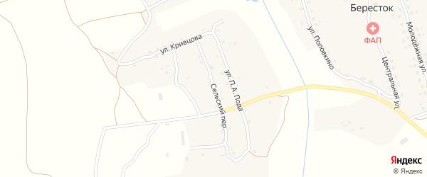 Сельский переулок на карте села Берестка с номерами домов