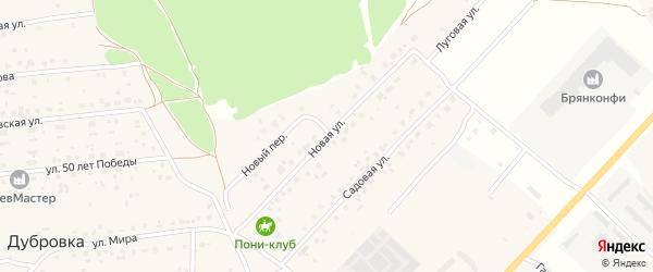 Новая улица на карте деревни Дубровки с номерами домов