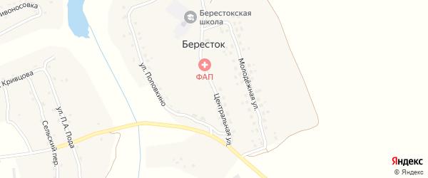 Центральная улица на карте села Берестка с номерами домов