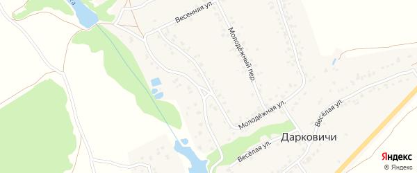 Молодежная улица на карте села Дарковичи с номерами домов