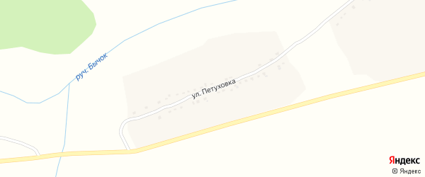 Улица Петуховка на карте Первомайского села с номерами домов