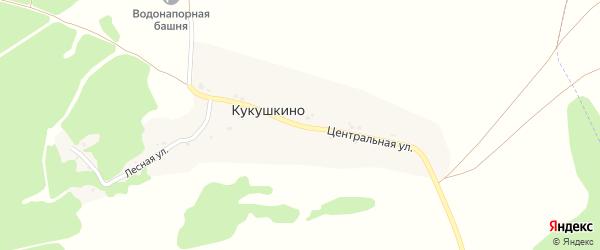 Центральная улица на карте села Кукушкино с номерами домов
