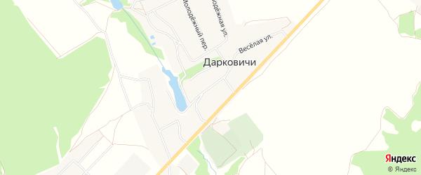 Карта села Дарковичи в Брянской области с улицами и номерами домов