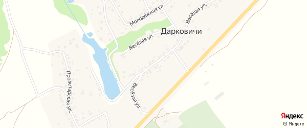 Территория Дом-интернат на карте села Дарковичи с номерами домов