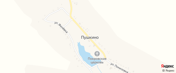 Центральная улица на карте села Пушкино с номерами домов