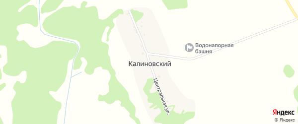 Центральная улица на карте Калиновского поселка с номерами домов
