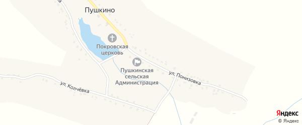 Улица Понизовка на карте села Пушкино с номерами домов