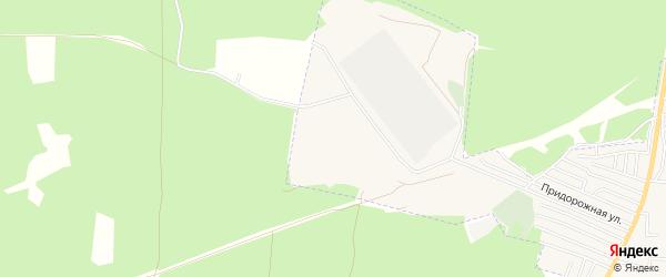 СТ Груша на карте Фокино с номерами домов