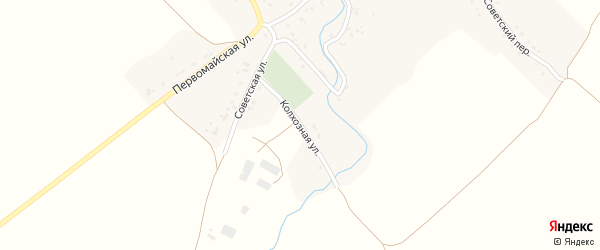 Колхозная улица на карте села Селечни с номерами домов