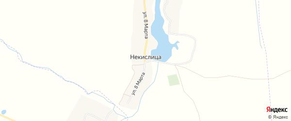 Карта села Некислицы в Брянской области с улицами и номерами домов