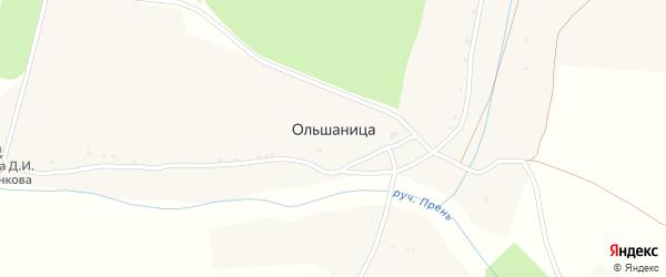 Цветочная улица на карте деревни Ольшаницы с номерами домов