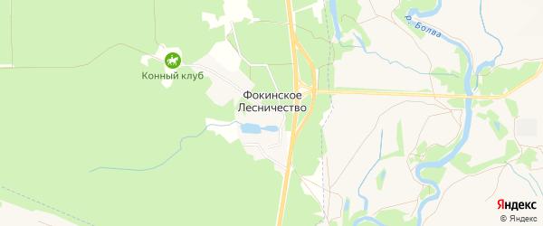 Карта поселка Фокинского Лесничества в Брянской области с улицами и номерами домов