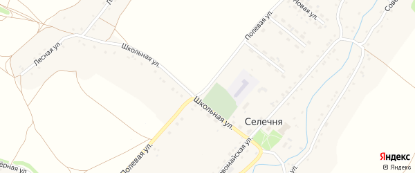 Полевая улица на карте села Селечни с номерами домов