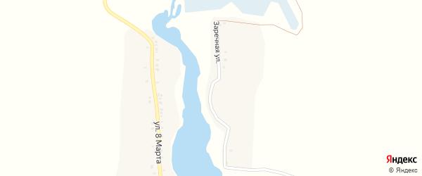 Заречная улица на карте села Некислицы с номерами домов