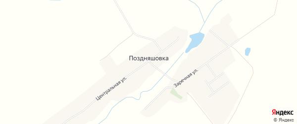 Карта села Поздняшовки в Брянской области с улицами и номерами домов