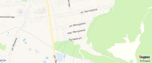 Переулок Мичурина на карте поселка Радицы-Крыловки с номерами домов