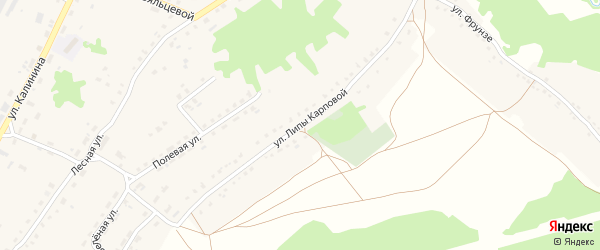 Улица Липы Карповой на карте поселка Алтухово с номерами домов
