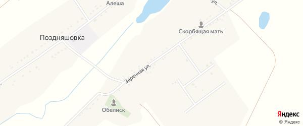 Заречная улица на карте села Поздняшовки с номерами домов