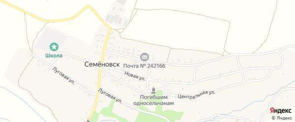 Молодежная улица на карте села Семеновска с номерами домов