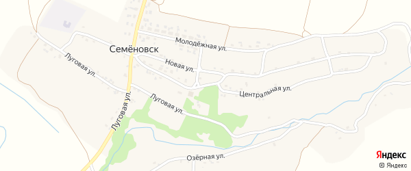 Центральная улица на карте села Семеновска с номерами домов