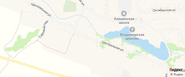 Центральная улица на карте села Алешинки с номерами домов