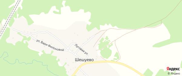 Заречная улица на карте деревни Шешуево с номерами домов