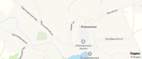 Новая улица на карте села Алешинки с номерами домов