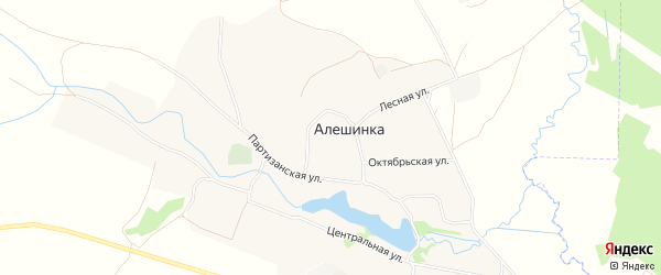 Карта села Алешинки в Брянской области с улицами и номерами домов